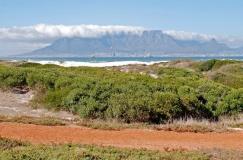 Western Cape Road Tour